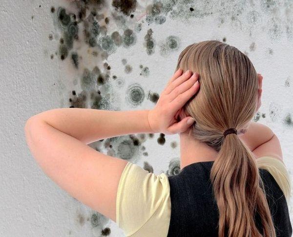 Пътеводител как да се отървете от калъпа по стените