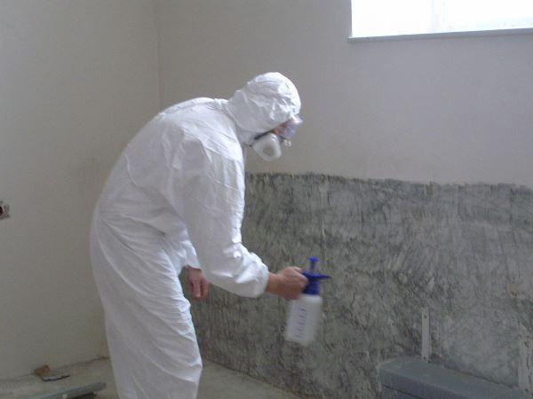 Ние изкореняваме плесен по стените със собствените си ръце, като използваме съвременни материали