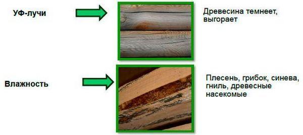 Изборът на боята за дървена къща
